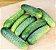 Pepino Híbrido Green Pick - Kit c/ 20 sementes - Imagem 5