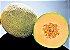Melão Híbrido Rock - Kit c/ 6 sementes - Imagem 4
