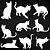 Adesivo - Cartela Gato Gata Kitty Kitten Cat - Imagem 2