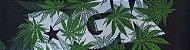 Lixa Mob Grip DGK Cannabis - Imagem 1
