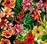 pelicula para water transfer printing modelo flores variadas medida de 1mts x 50 cmts de largura - Imagem 1