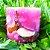 Vela Aromática de Baunilha Caamanha - Imagem 6