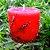 Vela Aromática de Cravo e Canela Caamanha - Imagem 2
