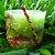 Vela Aromática de Cravo e Canela Caamanha - Imagem 5