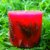 Vela Aromática de Rosas Caamanha - Imagem 4
