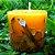 Vela Aromática de Rosas Caamanha - Imagem 1