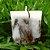 Vela Aromática de Lavanda Caamanha - Imagem 4