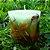Vela Aromática de Melancia Caamanha - Imagem 1