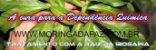 Semente de Entada rheedii - Erva do Sonho Africana - 1 semente - Imagem 2