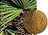 Serenoa repens S. c/ 100g,-,-,-,Afrodisiacos Naturais - Imagem 1