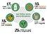 Moringa Oleifera - Acacia Branca - FOLHAS SECAS EM PÓ  100gr - Imagem 2