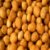 Amendoim Japonês Pote 250g - Imagem 1