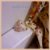 Anel Ramo de Folhas Cravejadas com Zircônia Cristal - Banho Ouro 18k - Semijoia de Luxo - Imagem 8