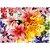 Puzzle Flowers Grow 1000 peças - Imagem 2