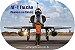 Azulejo AF1 Falcon - Imagem 2