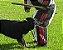 Calça Semi treinamento - Imagem 4