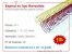 """Espiral de Aço Revestido 31,7mm (1 1/4"""") - Passo 6x1 - Imagem 1"""