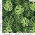 Tecido 100% algodão - Estampa Costela De Adão 0,50 metro - Imagem 1