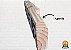Fingerboard Gaia Adventure - Pandora II  Escalada E Crossfit - Imagem 5