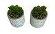 Vaso Decorado com Suculenta Sortido 4885 - Imagem 4