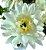 Buque Dalia X5 28CM Branco 06259 - Imagem 5