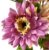 Buque Dalia X5 28CM Rosa Claro Mesclado 06259 - Imagem 4