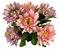 Buque Dalia X5 28CM Rosa 06259 - Imagem 1