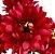 Buque Dalia X5 28CM Vermelho Claro Mesclado 06259 - Imagem 3