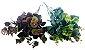 Folhagem Eucalipto Verde X72 50CM 26514 - Imagem 4