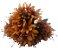 Buque Lírio Mini X18 Laranja Outono 32CM 42989005 - Imagem 1