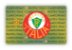 Card.me OFICIAL - PALMEIRAS - Imagem 2