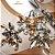 Sapatilha Schutz De Amarrar Pedraria Bico Fino - Imagem 4