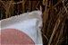 Capa de Almofada Formas Abstratas. - Imagem 2