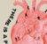 Poster Coração - Imagem 2