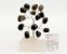 Árvore de Pedra Pequena - Imagem 1