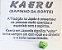 KAERU SAPINHO DA FELICIDADE/RIQUEZA/SORTE - Imagem 1