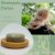 Shampoo Detox - Be Low - Imagem 2
