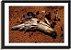 Quadro Decorativo Cavalo - Imagem 3