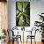 Quadro Natureza - Verde Sublime - Imagem 1