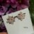 Brinco Folheado a Ouro 18K Formato de Flor com Zircônias - Imagem 2