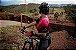 MACAQUINHO FEMININO STN RACE PINK TAM M - Imagem 2