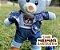 Urso Satim Azul - Imagem 2