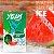 Yeah Pods De Reposição Watermelon Ice - Compatíveis com Juul - Yeah - Imagem 1