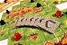Carcassonne - Segunda Edição - Imagem 2