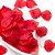 100 Pétalas De Rosas Vermelhas - Imagem 1