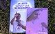 KIT 04 - Em Cristo Somos Mais Que Vencedores e Terço das Mulheres - Imagem 3