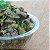 Comida natural para gatos filhotes e adultos - Degustação - Imagem 1
