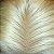 Silk Topo Clousure 10 x 10 - #613 Loiro 40cm Comprimento - Imagem 2