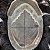 Prótese Capilar Parcial Apollo Hibrida  ( 15 x 20 cm ) #1B Castanho Escuro + Curso de Auto Manutenção Grátis - Imagem 5