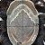 Prótese Capilar Parcial Apollo Híbrida (17,5 X 25 cm) #1B Castanho Escuro + Curso de Auto Manutenção Grátis - Imagem 5